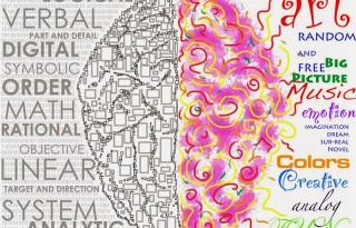 Creier - emisfere cerebrale