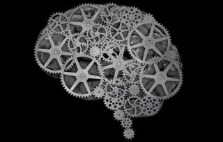 5 suplimente pentru creier