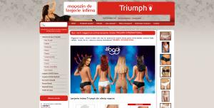 Magazinul Online magazin-lenjerie-intima.ro